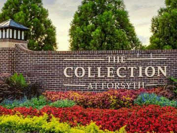 Photo of: Collection at Forsyth